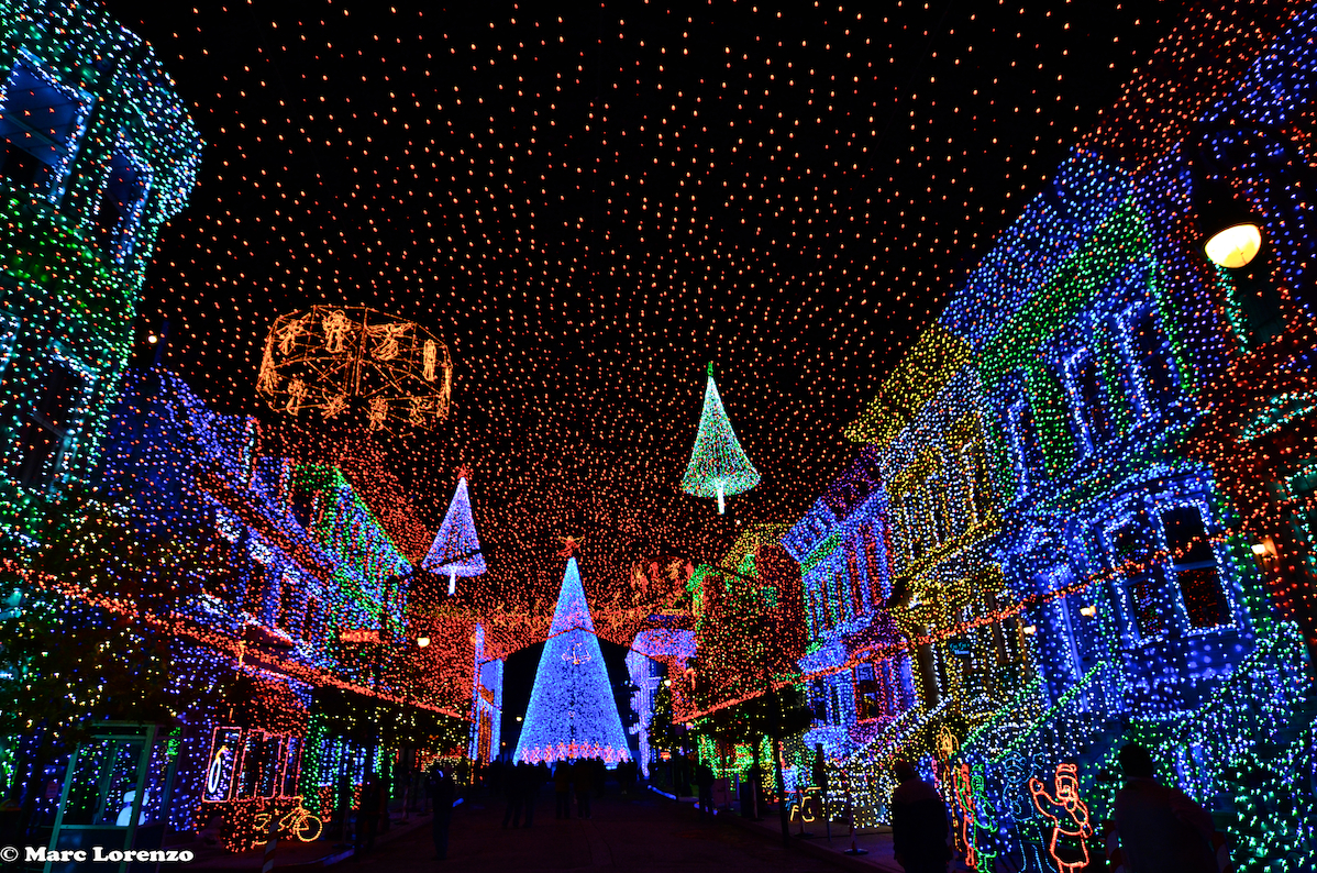 Disney Photo Fun Friday – MORE Osborne Family Spectacle of Dancing ...