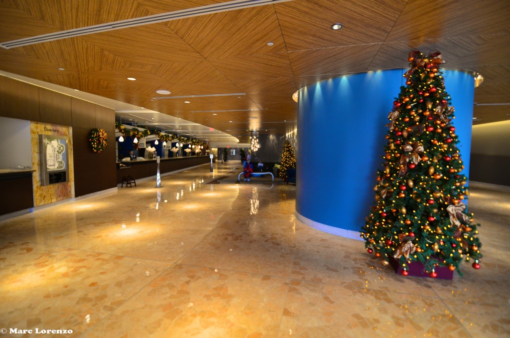 Contemporary Lobby with Christmas Tree (1)